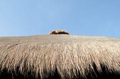 Крыша составленная сена Стоковые Фото