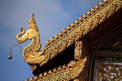 крыша слона Стоковые Фотографии RF