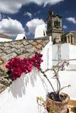 крыша цветка Стоковые Изображения