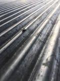 Крыша цинка с Стоковое Изображение