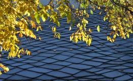 Крыша шифера каменная, традиционная высокогорная архитектура Стоковое Фото