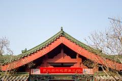 Крыша ` s Китая стоковое фото rf