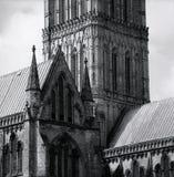 крыша salisbury собора Стоковые Фотографии RF