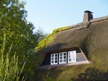 крыша thatched Стоковое Изображение