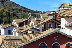 Крыши европейского пейзажа снабжения жилищем стиля Стоковое фото RF