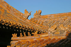 крыши Пекин запрещенные городом Стоковое Изображение RF