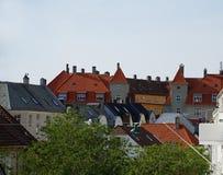Крыши плитки Бергена, Норвегии и зеленого уличного фонаря стоковая фотография rf