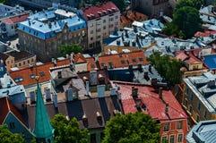 Крыши старого городка Таллина, Эстонии Стоковые Фотографии RF