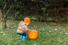 Крышка отверстия младенца на тыкве хеллоуина Стоковое Изображение RF