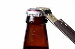 крышка пива Стоковая Фотография RF