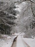 Крышки снега сельская местность Стоковые Фотографии RF
