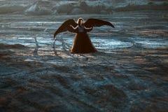 крыла ангела черные Стоковые Изображения RF