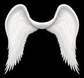 Крыла Анджела Стоковое Изображение RF