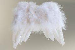 Крыла Анджела стоковое фото rf
