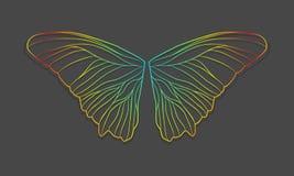 Крыла бабочки вектора иллюстрация штока
