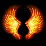 Крыла огня Стоковое фото RF