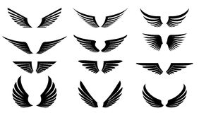 крыла Стоковые Фотографии RF