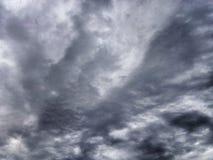 крыла Стоковая Фотография