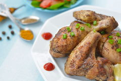 Крыло жареной курицы, нога и конец томатного соуса вверх Стоковое фото RF