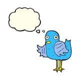 крыло птицы шаржа развевая с пузырем мысли Стоковое фото RF