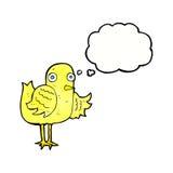 крыло птицы шаржа развевая с пузырем мысли Стоковое Фото