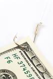 крюк доллара удя Стоковые Фотографии RF