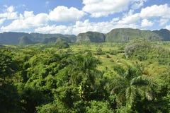 КУБА Valle de Viñales в del Рио Piñar стоковое фото