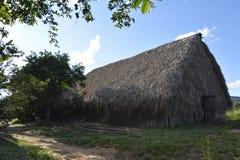 КУБА Valle de Viñales в del Рио Piñar Стоковая Фотография