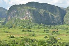 КУБА Valle de Viñales в del Рио Piñar стоковые фото