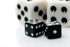 кубики играя в азартные игры Стоковые Фото