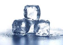 Кубики льда стоковые фото