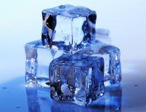 Кубики льда стоковое изображение
