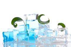 кубики морозят плавить стоковое изображение