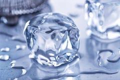кубики морозят плавить Стоковое Изображение RF