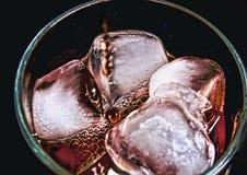 кубики морозят плавить Стоковые Изображения