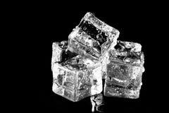 кубики предпосылки черные морозят влажную Селективный фокус стоковое изображение rf