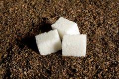 Кубики сахара на высушенных листьях чая стоковое фото rf