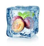 Кубик и слива льда Стоковые Изображения RF