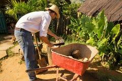 Кубинец в ферме раскрывает кокос для того чтобы подготовить питье стоковое фото rf