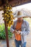 Кубинец в ферме слезает одичалый ананас стоковая фотография rf