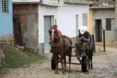 Кубинськая лошадь и телега Стоковые Фотографии RF