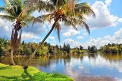 Кубинський ландшафт страны Стоковая Фотография RF