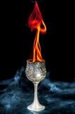Кубок вина Стоковое фото RF