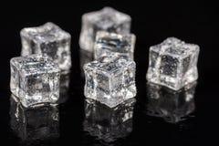 Кубы льда с падениями воды на черной предпосылке с отражениями Стоковые Изображения