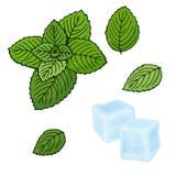 Кубы мяты и льда также вектор иллюстрации притяжки corel Пипермент на белой предпосылке Изолированные предметы Установите для осв бесплатная иллюстрация