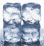 Кубы льда Стоковое Фото