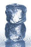 Кубы льда стоковая фотография rf