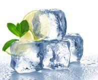 Куб известки, мяты и льда Стоковые Фото