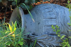 Кувшин глины Стоковая Фотография
