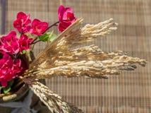 Кувшин с ветвью ушей яблока и риса стоковое фото rf